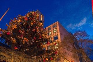 クリスマス時期の建物.jpg